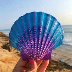 20 Painted Sea Shell Designs thumbnail