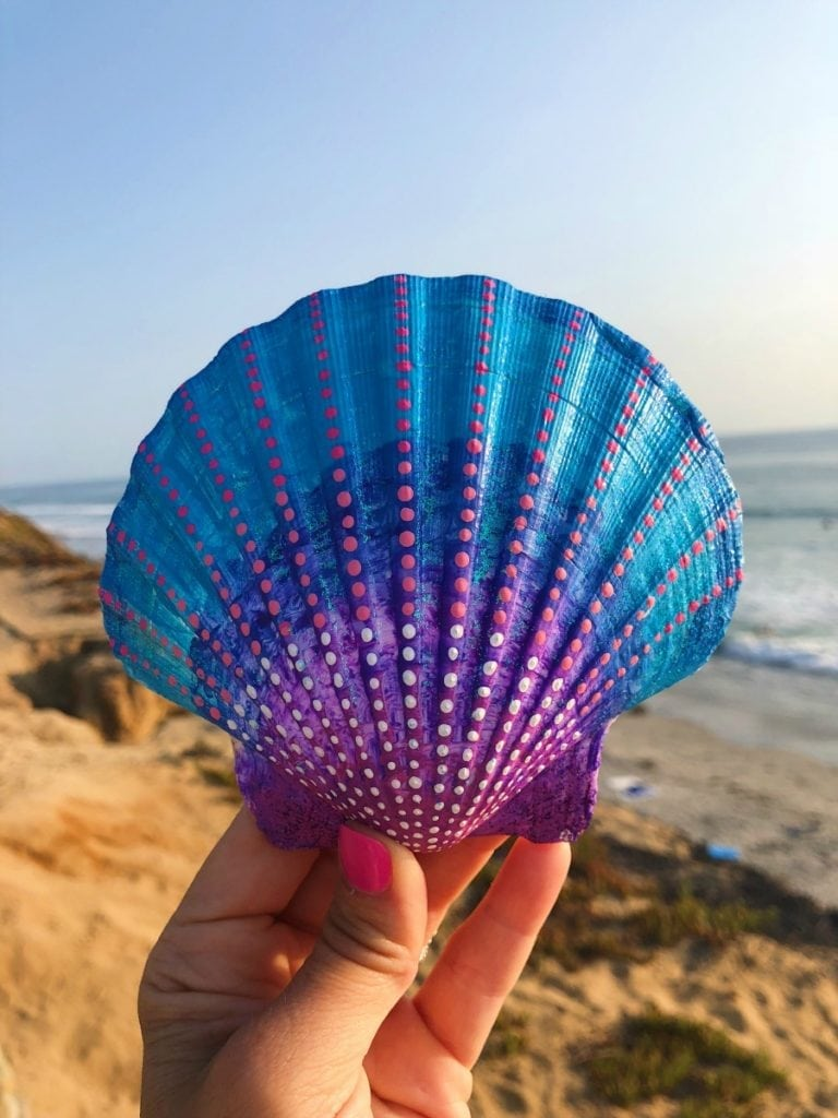 Painted Sea Shell Art