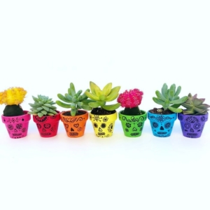 Sugar Skull Craft - Painted Flower Pots