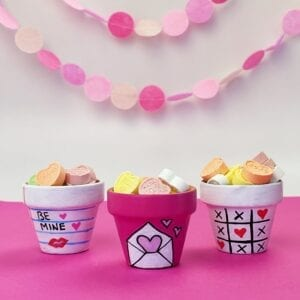 Homemade Valentine's Day Gift Flower Pots thumbnail